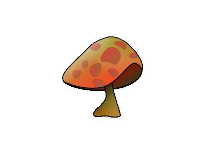 Mushroom Benji Park  Plants
