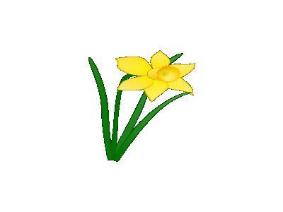 Daffodil Jonathan Dietri 01 Plants