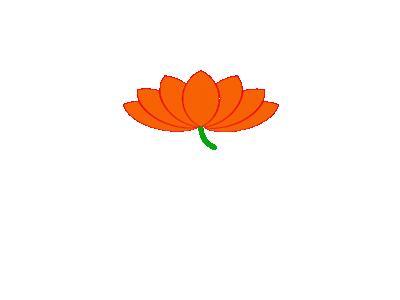Lotas Yogesh Kanitkar 01 Plants