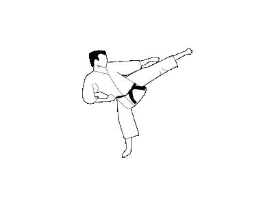Karate Kick Frouke 01 Recreation