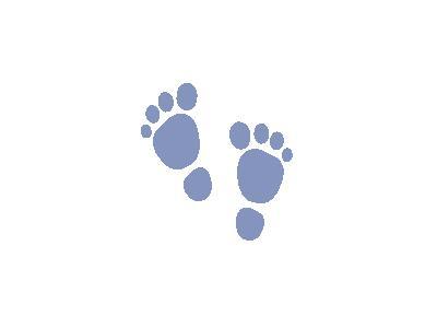 H Foot Print Jean Victor  Shape