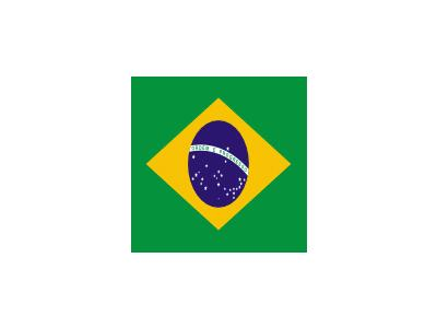 Flag Of Brazil Rodrigo T1 Symbol