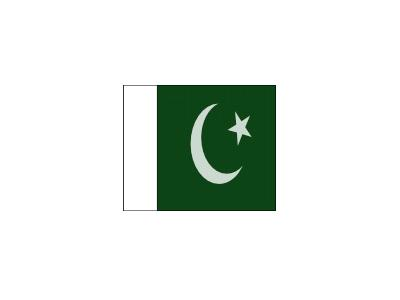 Pakistani Official Flag 01 Symbol