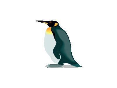 Pinguino4 Other