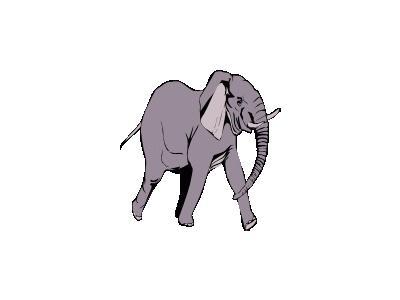 Elefante In Corsa Other