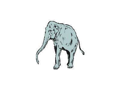 Elefantone Other