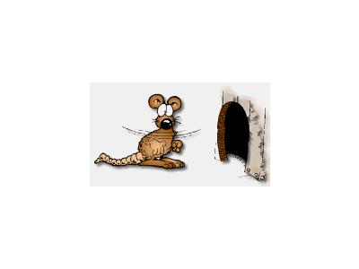 Logo Animals Rodents 003 Animated