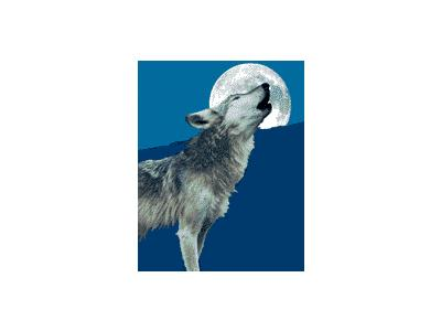 Logo Animals Wolves 006 Animated