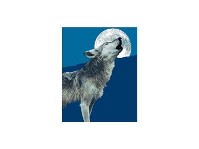 Logo Animals Wolves 006 Animated