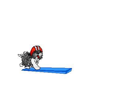Logo Animals Dogs 004 Animated