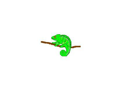 Logo Animals Reptiles 013 Animated